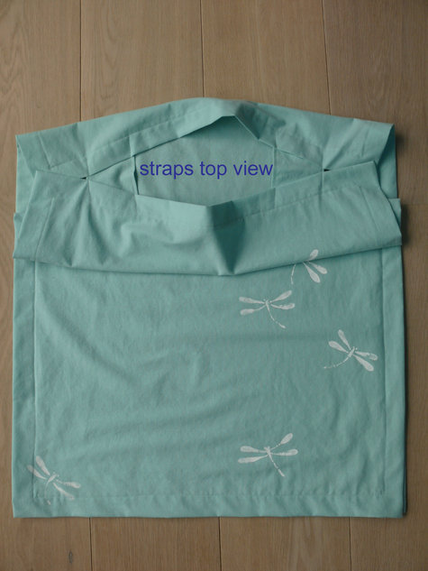 P1070041-straps2_large