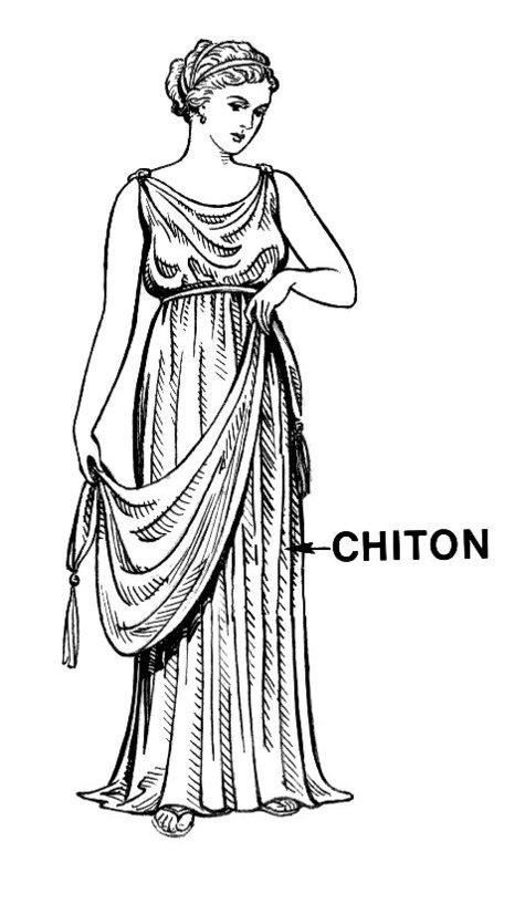 Chiton_large