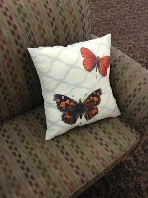 Halloween_butterfly_pillow_large