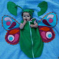 Babybutterfly6_listing