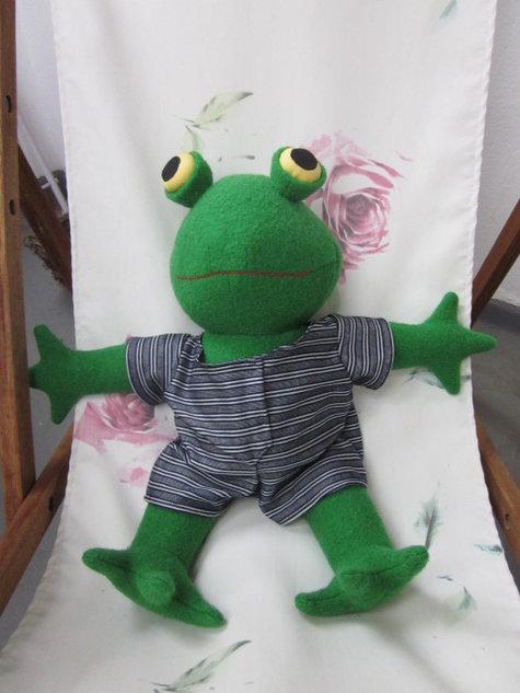 Frog2_large