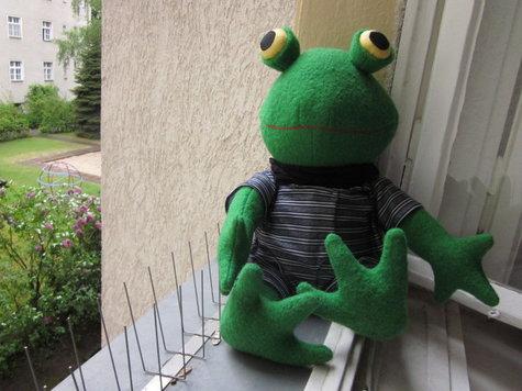 Frog3_large