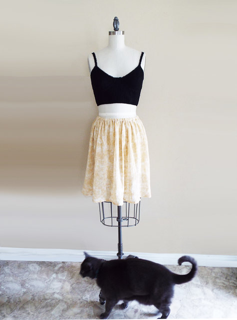 Cat_large