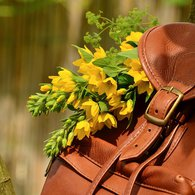 Leather_backpack_listing